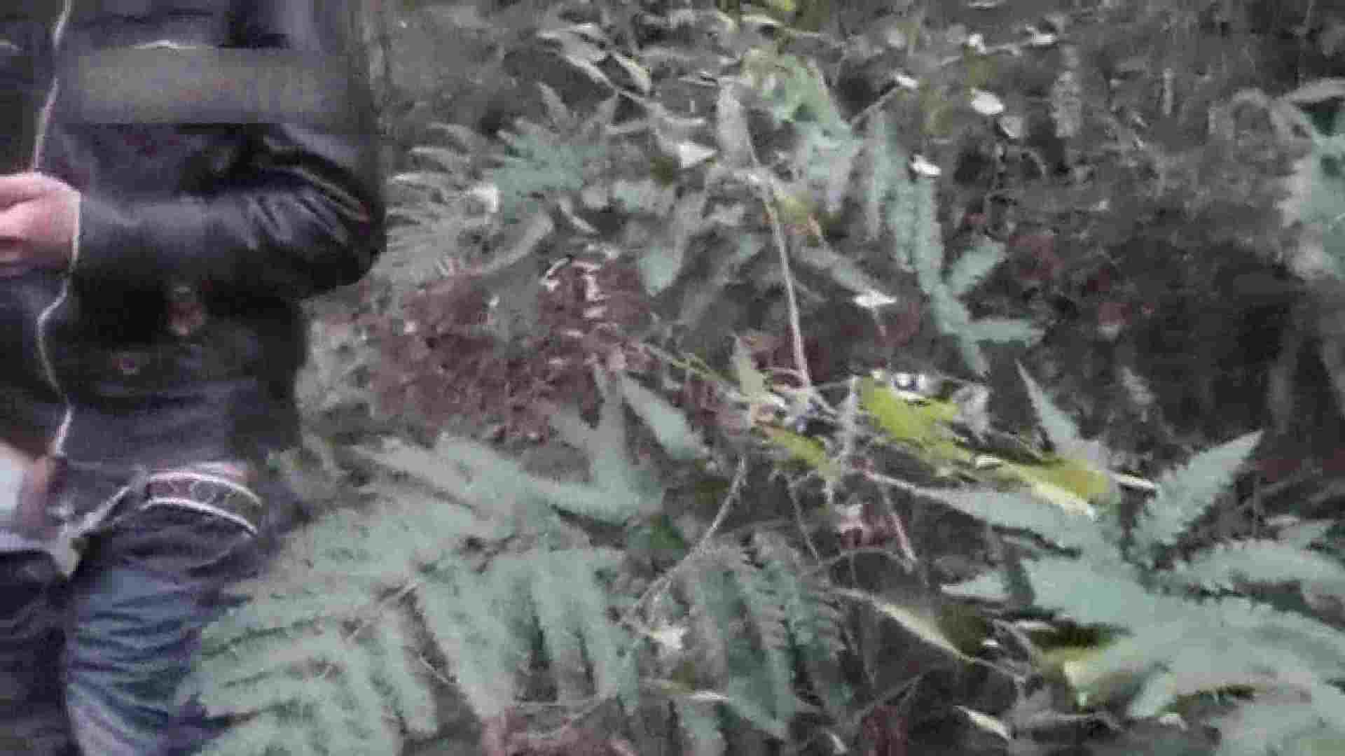 森林浴とオナニー 露出 | フェチ色々  76pic 21
